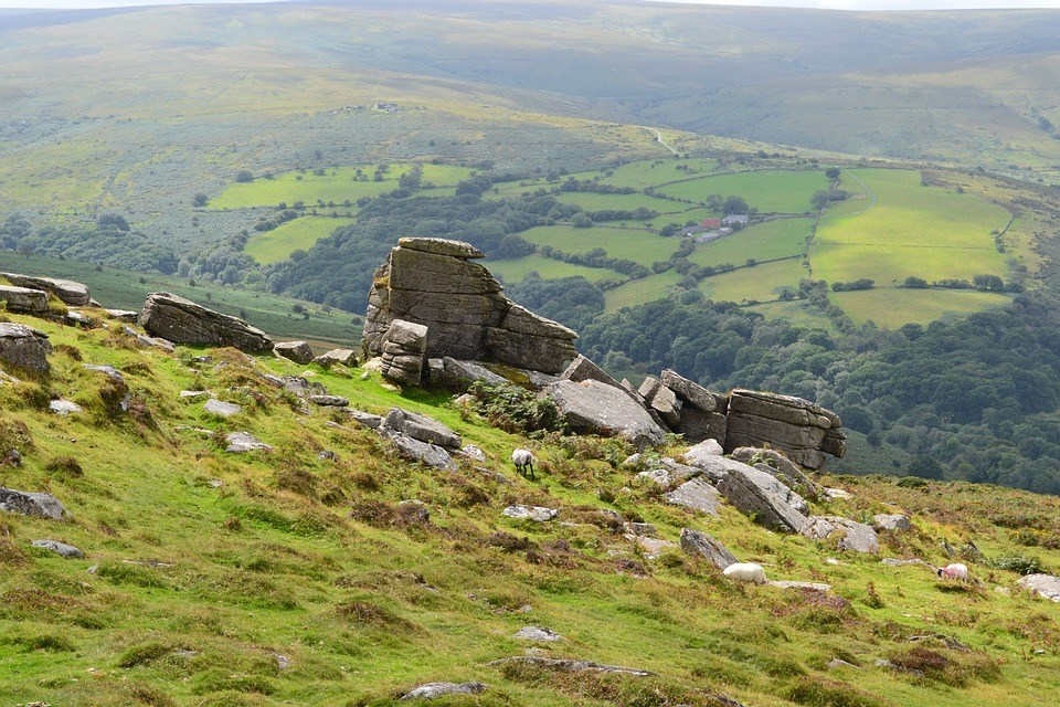 Dartmoor landscape - The Best Dog Walks In Devon
